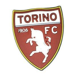 MAGNETE IN GOMMA MORBIDA TORINO FC