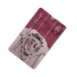 USB CARD FONDAZIONE STADIO FILADELFIA